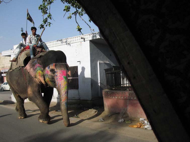 o_Jaipur_Page_4