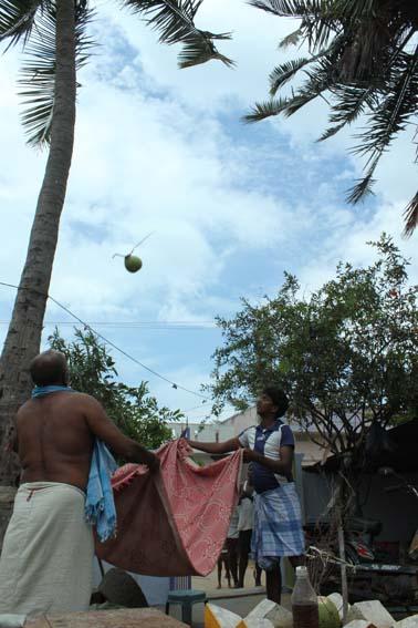 y_Indien_Chennai_Malabalipuram_Ongole_Fischerdörfer_Page_012