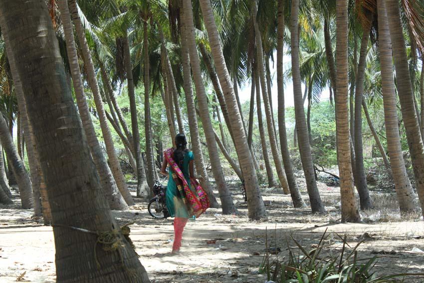 y_Indien_Chennai_Malabalipuram_Ongole_Fischerdörfer_Page_030